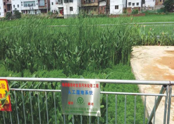 梅州市梅县区梅西镇农村生活污水处理nba直播比赛下载人工湿地系统